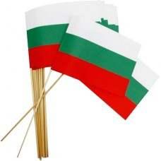 Хартиено знаме на България с дървена клечка